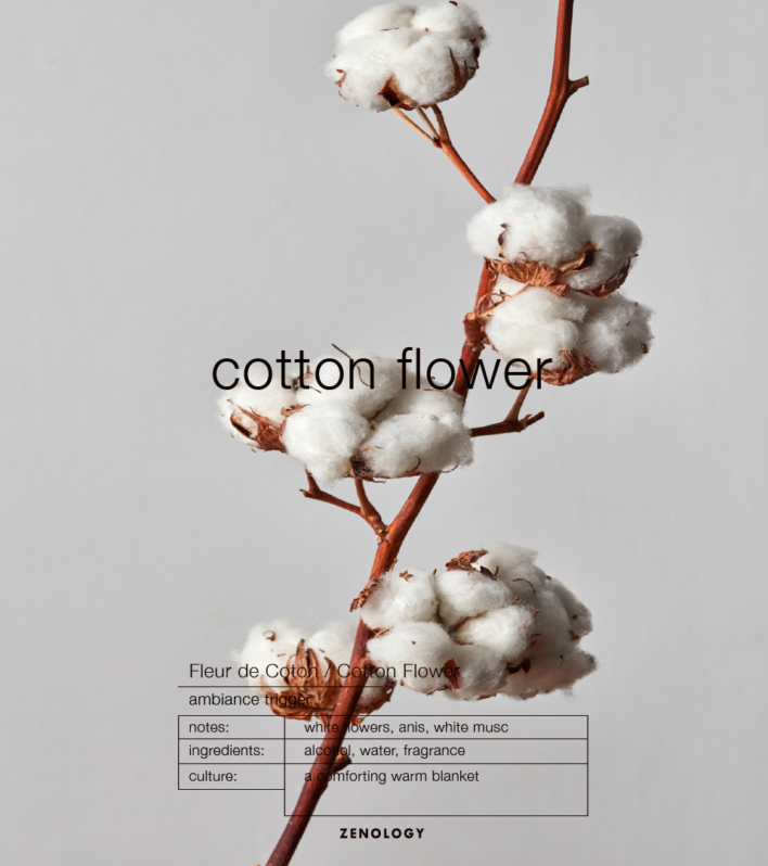 Zenology Home Fragrance Cotton Flower