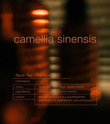 ZENOLOGY Camellia Sinensis cosmetic notes