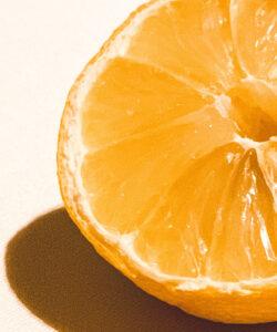 ZENOLOGY Vitamin C - The Antioxidant