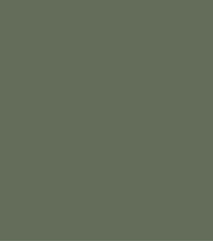 color sheets 24